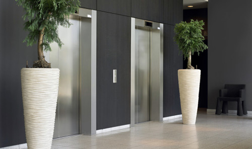 Trees By Elevator