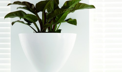 Super Nova White Planter